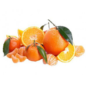 Duftöl Zitrusfrüchte 500ml (nur Dekoration)