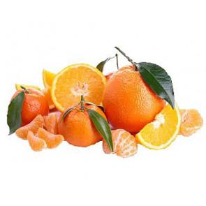 Duftöl Zitrusfrüchte 100ml